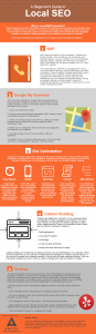 Beginner's Guide to Local SEO Infographic